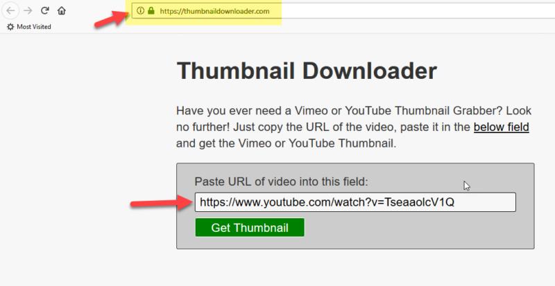 visit thumbnail downloader website